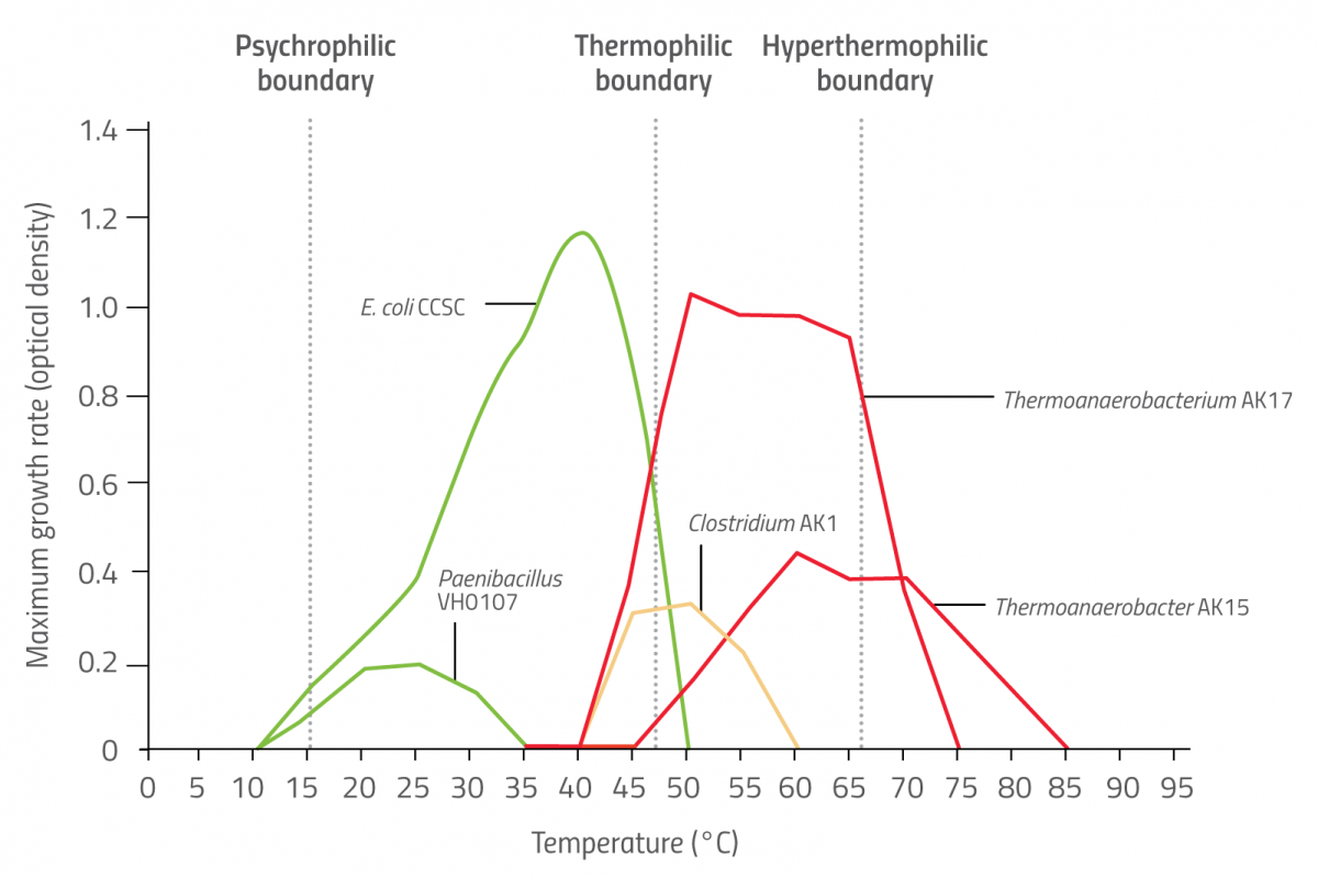 Graph showing the optimum temperature range of several different microorganisms
