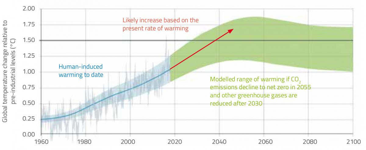 Observed and projected global temperature change