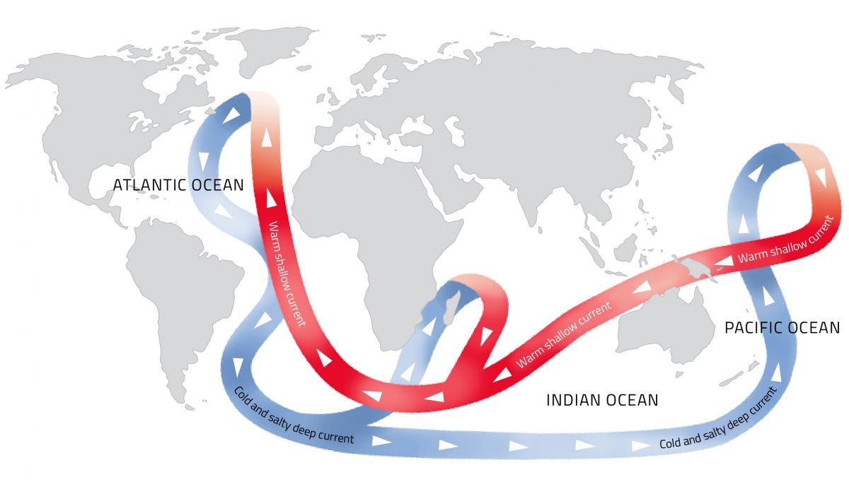 Thermohaline circulation of the world's oceans