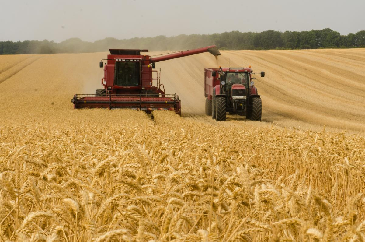 Research into plant circadian clocks has important implications for agricultural productivity.