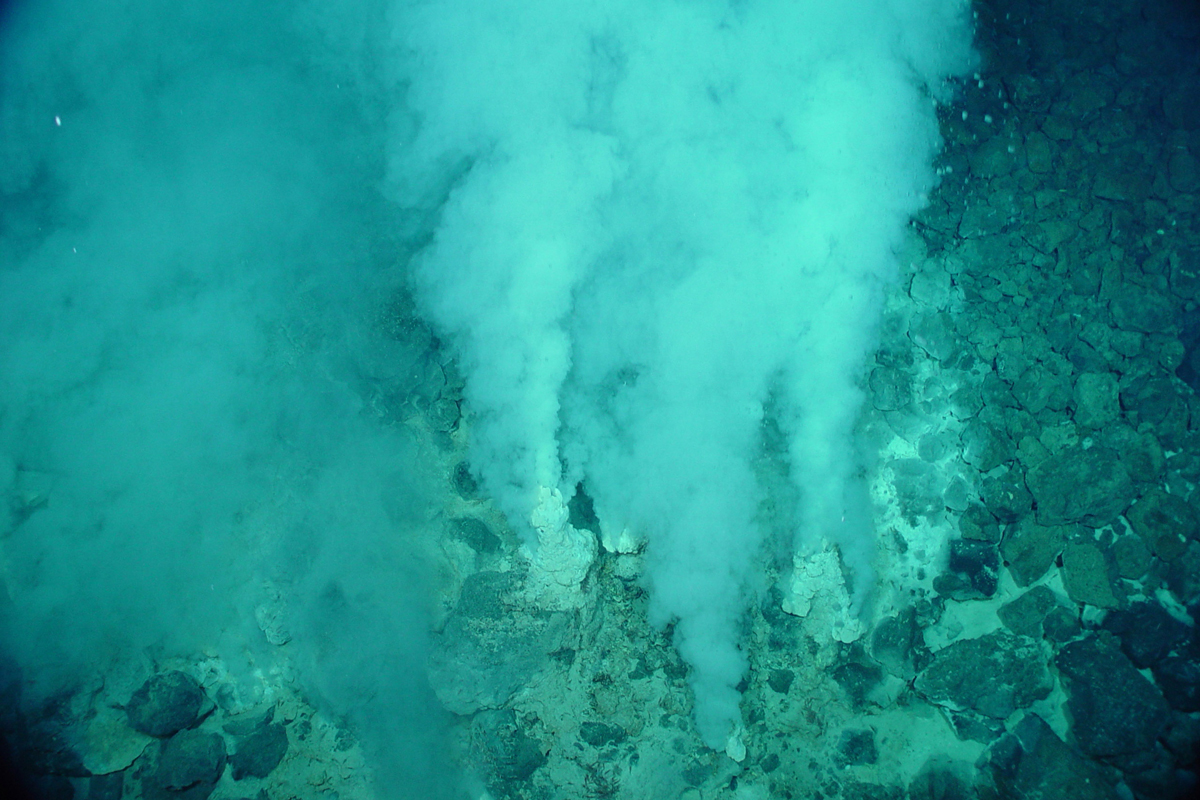 Evidence of Earth's earliest life forms has been found in hydrothermal vents