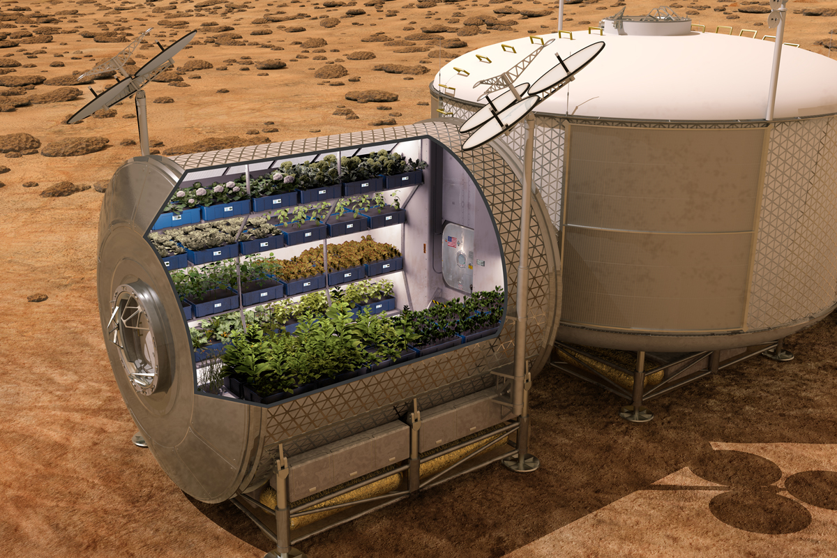 Astronauts plan to grow food on future spacecraft and other planets to enable self-sufficient space exploration