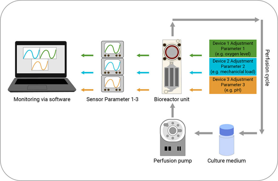 A scheme of microfluid devices incorporating nutrient infusions and monitoring of relevant parameters via sensors.